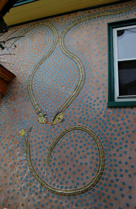 how to catch a garden snake in the house